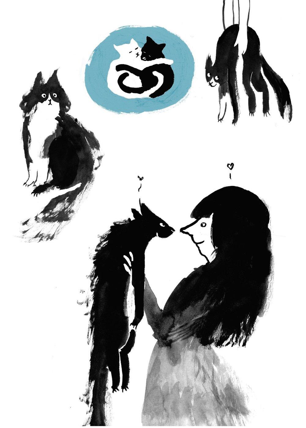 cats - Copy.jpg