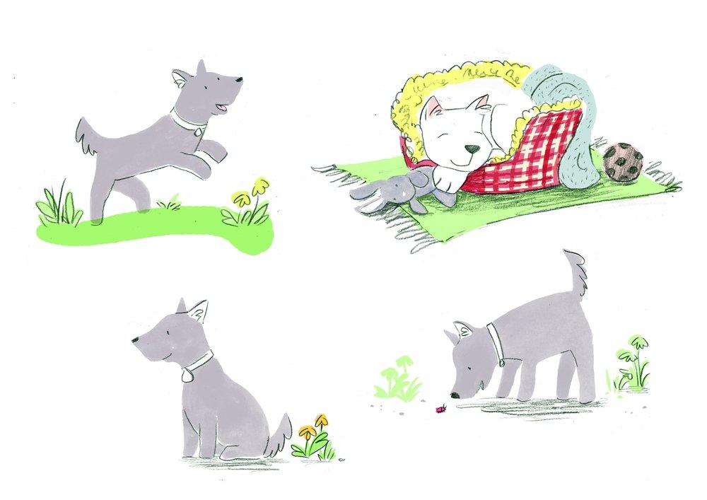 Little dog sheet.jpg