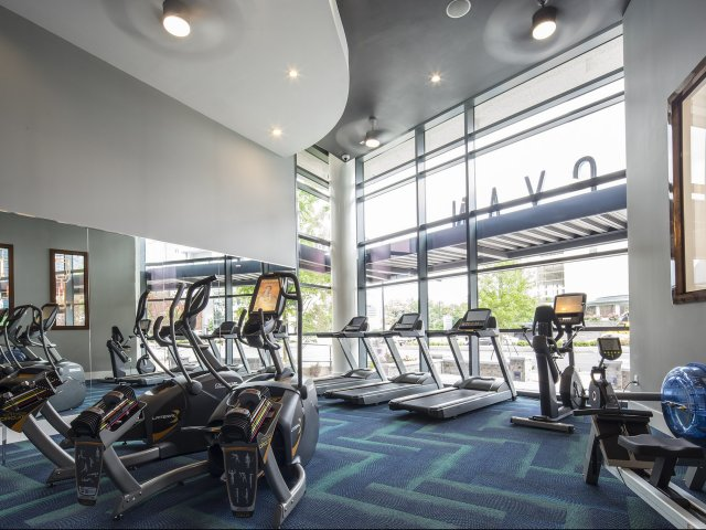 Brasfield & Gorrie - Cyan (Exercise Room)