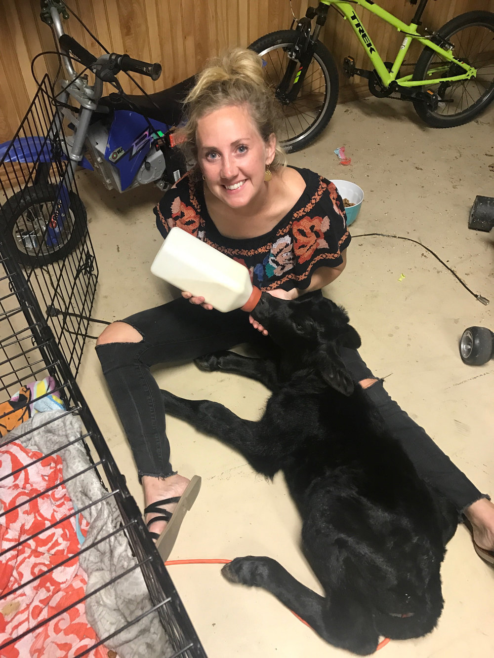 ^ Even on her birthday, Mali takes care of a sick calf in her garage.