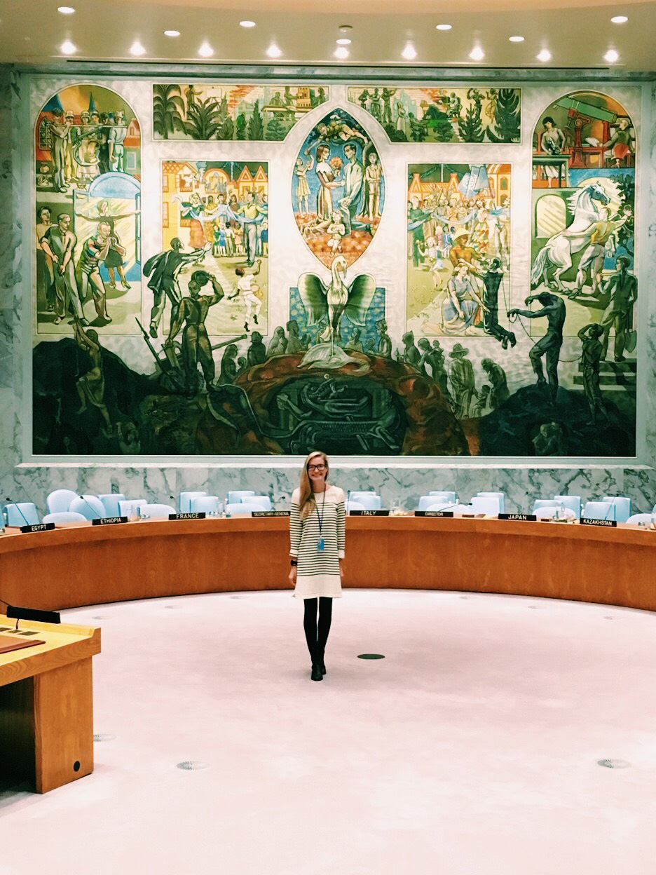 ^ Paige in the Security Council in the fall of 2017.