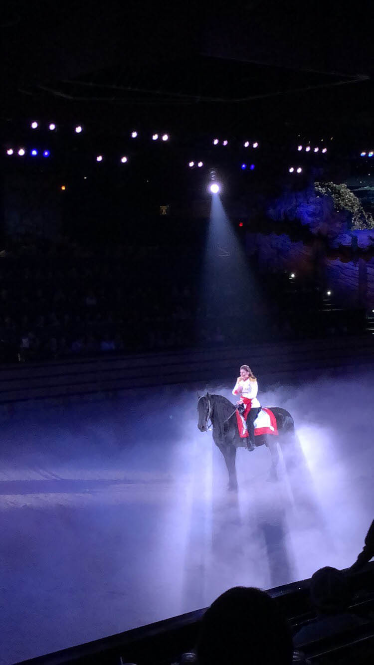 """During her opening monologue as MC of the show, Taylor rides under the spotlight on her horse, """"Nico."""""""