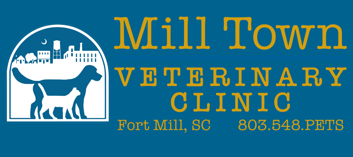 Mill Town Veterinary Clinic