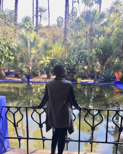 Jardin Majorelle Views  Marrakech, Jan 2017