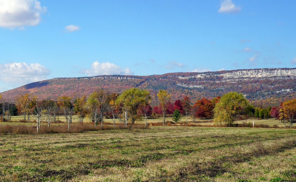 fall+field+view.jpg