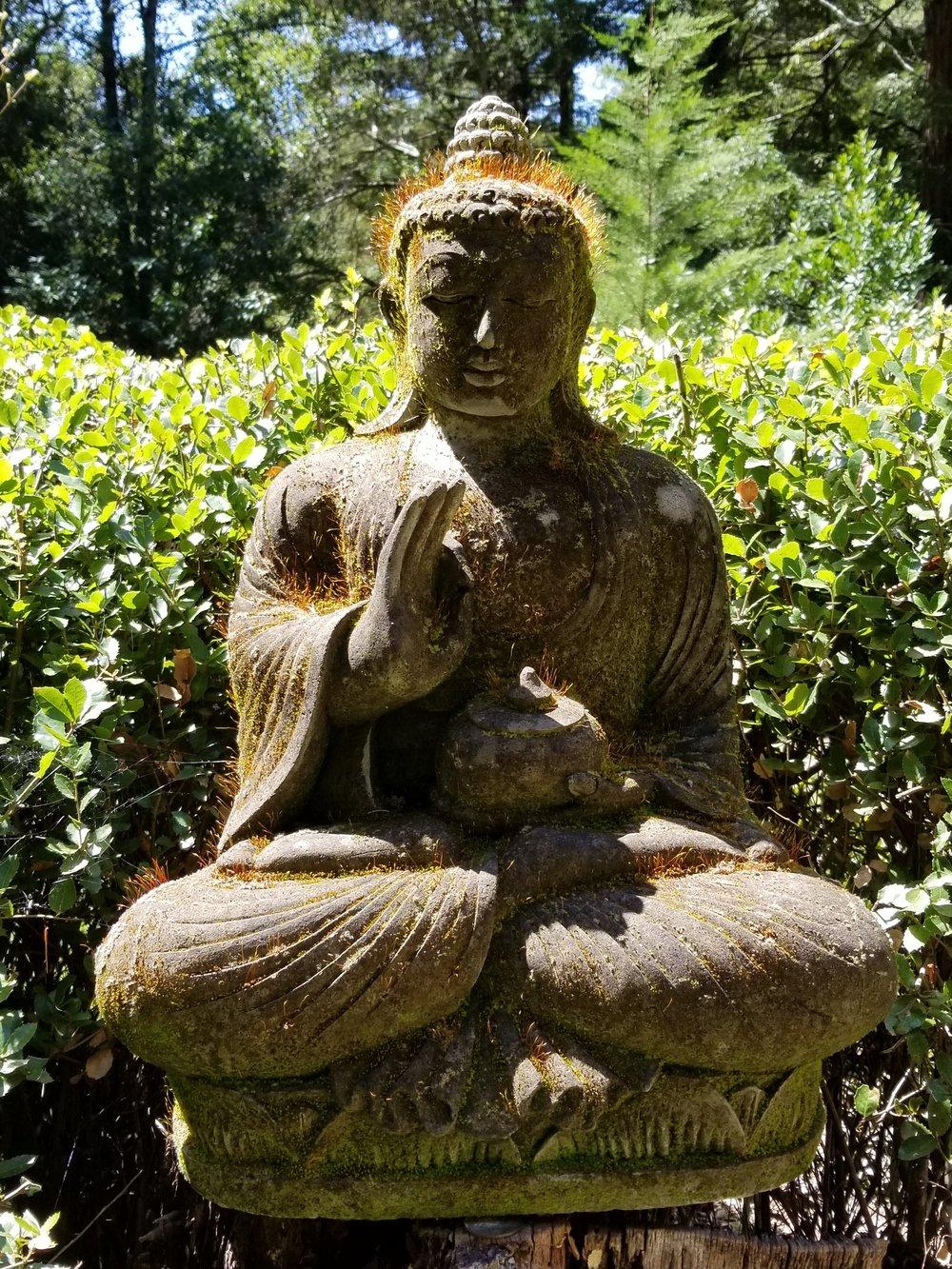 Buddha at Vaj.jpg