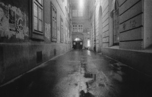 Vienna_01-300x192.jpg