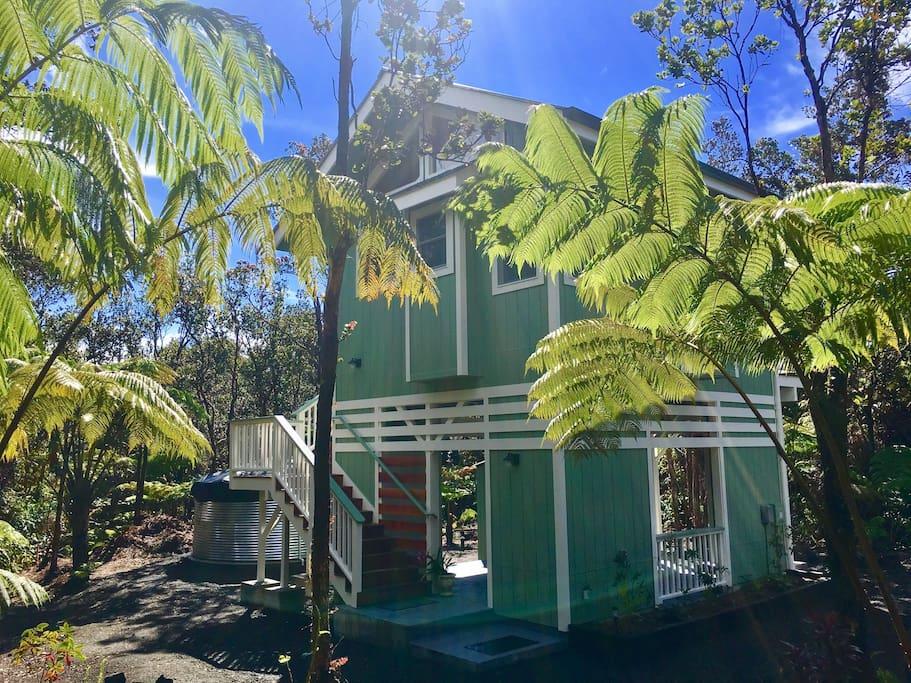hawaiian-tree-cottage-1.jpg