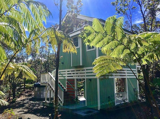 The Hawaiian Tree Cottage: a 300 sq ft retreat in the town of Volcano, HI. Enjoy a glass of wine at night while taking views of the  surrounding lush fauna. Available on Airbnb for $80/night! Link in profile! . . . #tinyhouse #tinyhome #cottage #travel #hawaii #airbnb