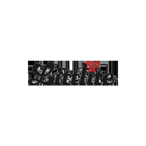 Distributor-Logo_0031_Littlite-Logo.png