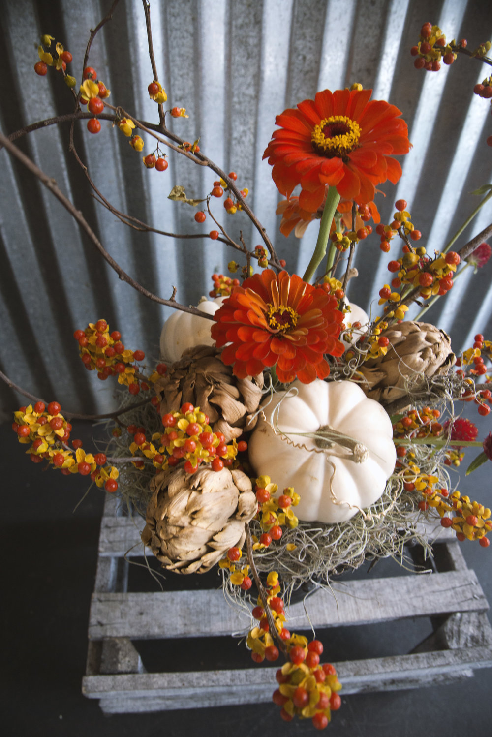 ppreserved centerpiece thanksgiving centerpiece deny mertz mitchs flowers new orleans florist.jpg