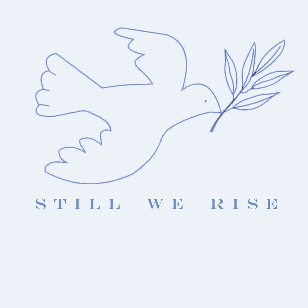 still we rise bird by blakely hiner