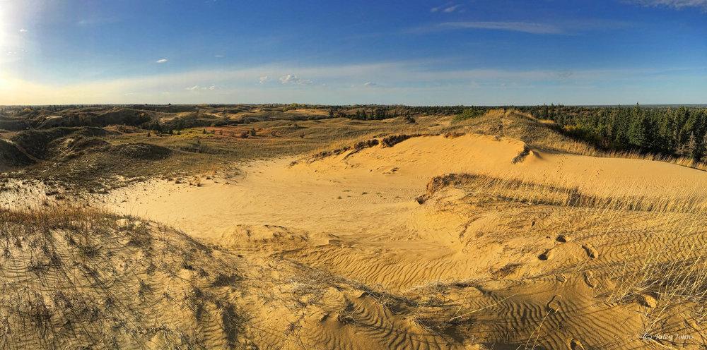 Aurora Dunes site.jpg