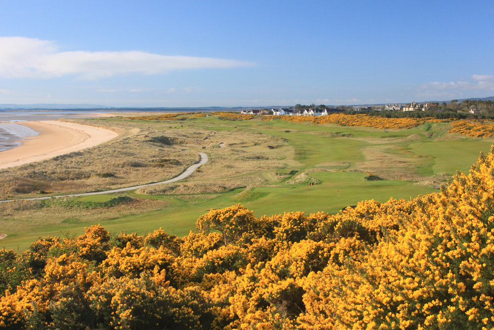 Integrative Golf Co. - Dornoch 3.JPG