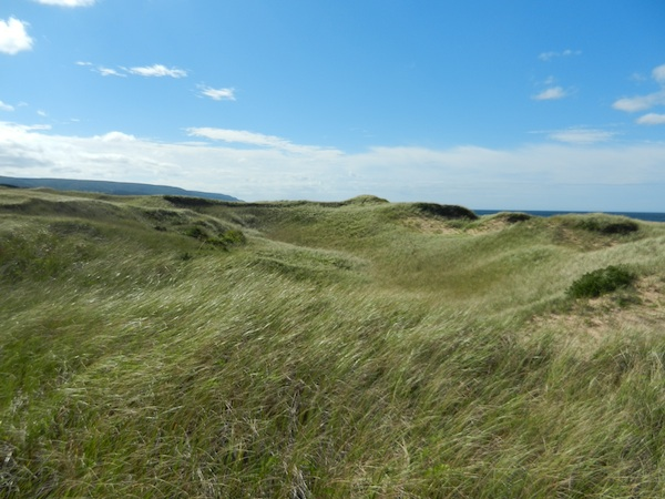 Some of the sand dunes before construction