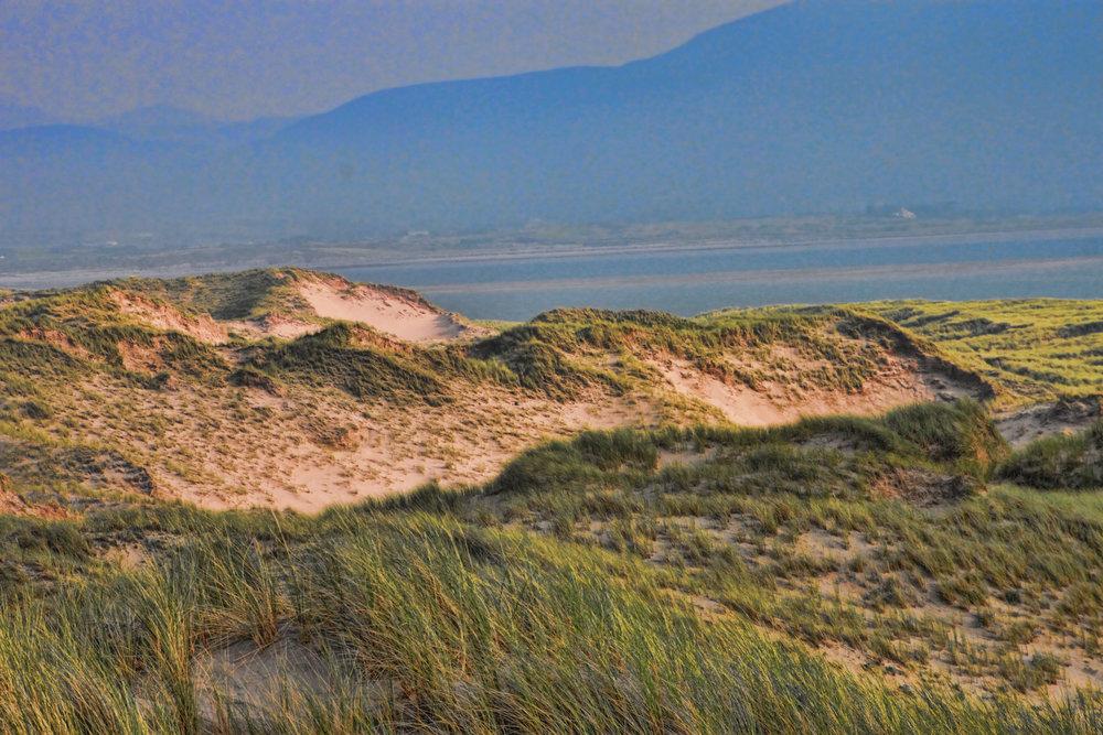 Inch Dunes 8 - Integrative Golf.jpg