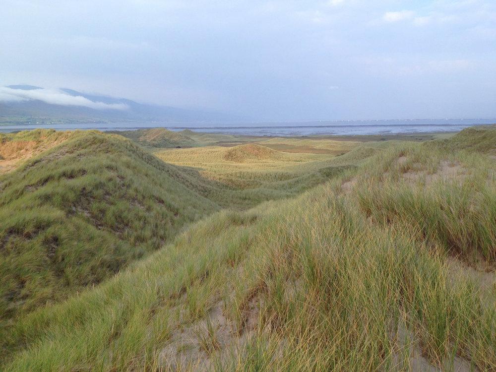 Inch Dunes 1 - Integrative Golf.jpg