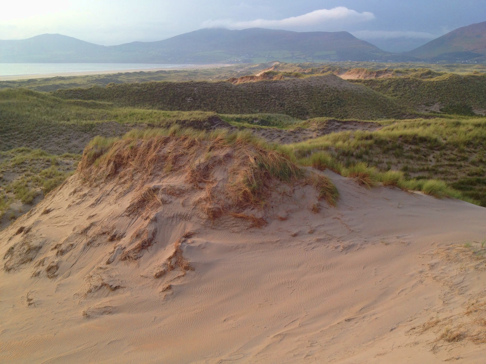 Inch Dunes - Integrative Golf.jpg