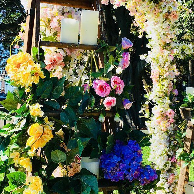 Fiori! Fresh flowers for Oakleigh Vigneto Weddings #oakleighvignetoweddings #weddingflowers #fiori #orange #bathurstnsw