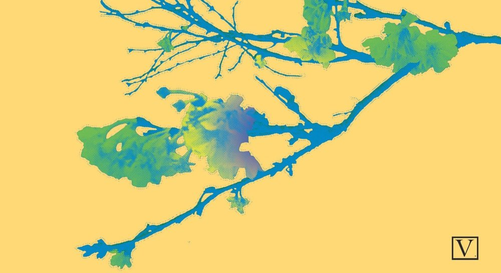 """Cherry Blossom Yellow & Gree, 15 edition + 2 Artist Proof,inkjet print on archival paper 290g/sm, 20"""" X 37"""", 2018"""