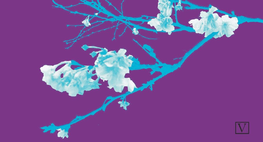 "Cherry Blossom Purple & Blue, 15 edition + 2 Artist Proof,inkjet print on archival paper 290g/sm, 20"" X 37"", 2018"
