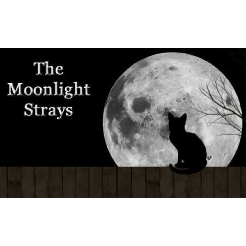 The Moonlight Strays