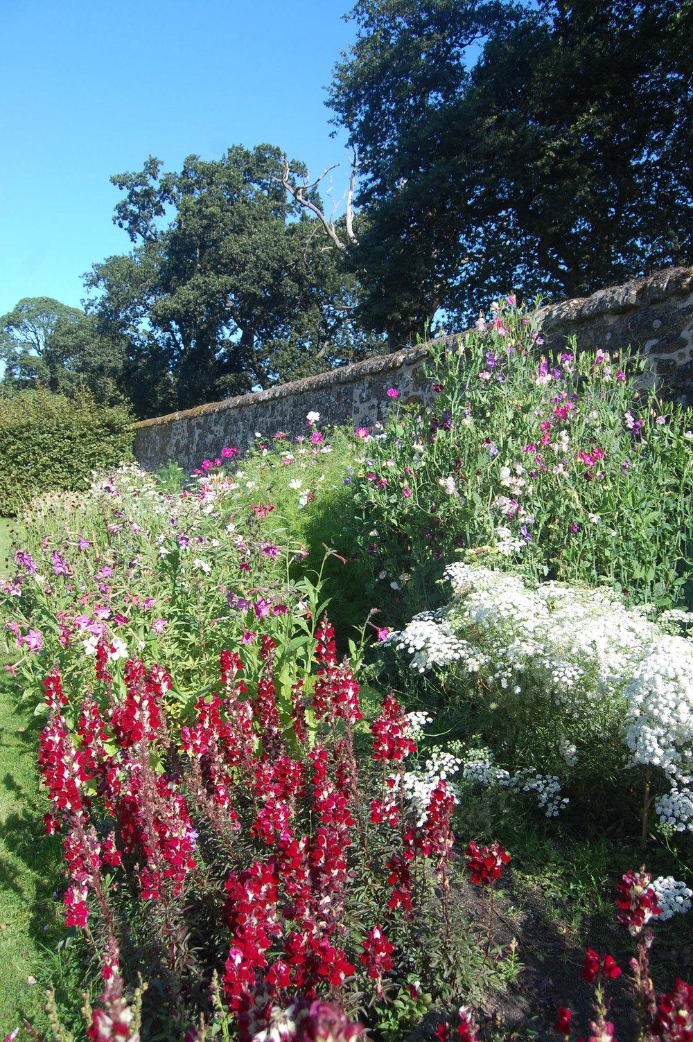 walled garden 2.JPG
