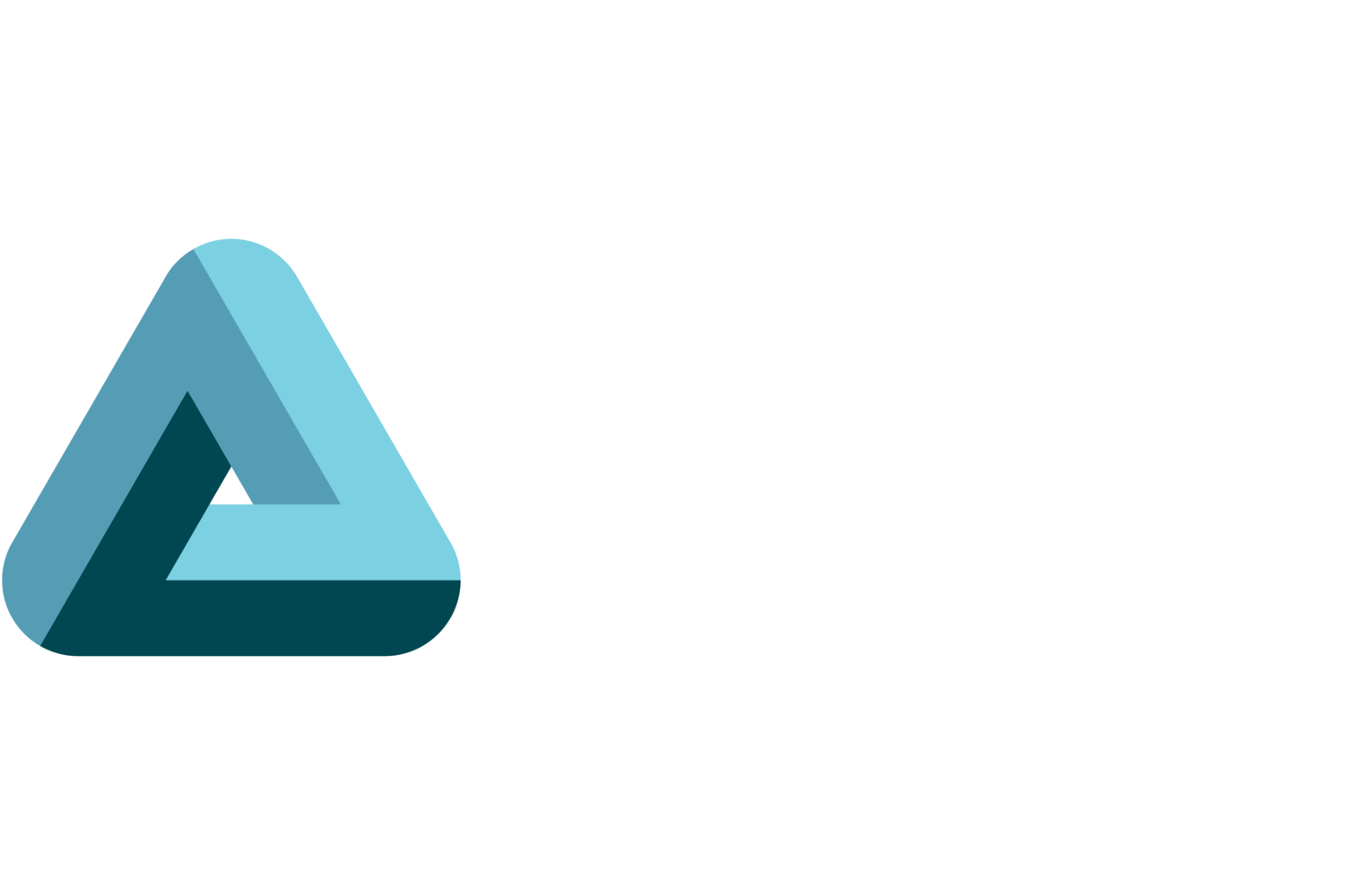 NeuroSolutions International