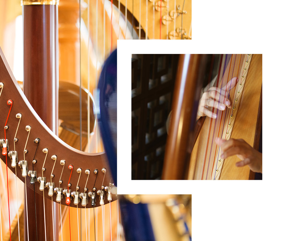the-gilded-harps-contact-image.jpg