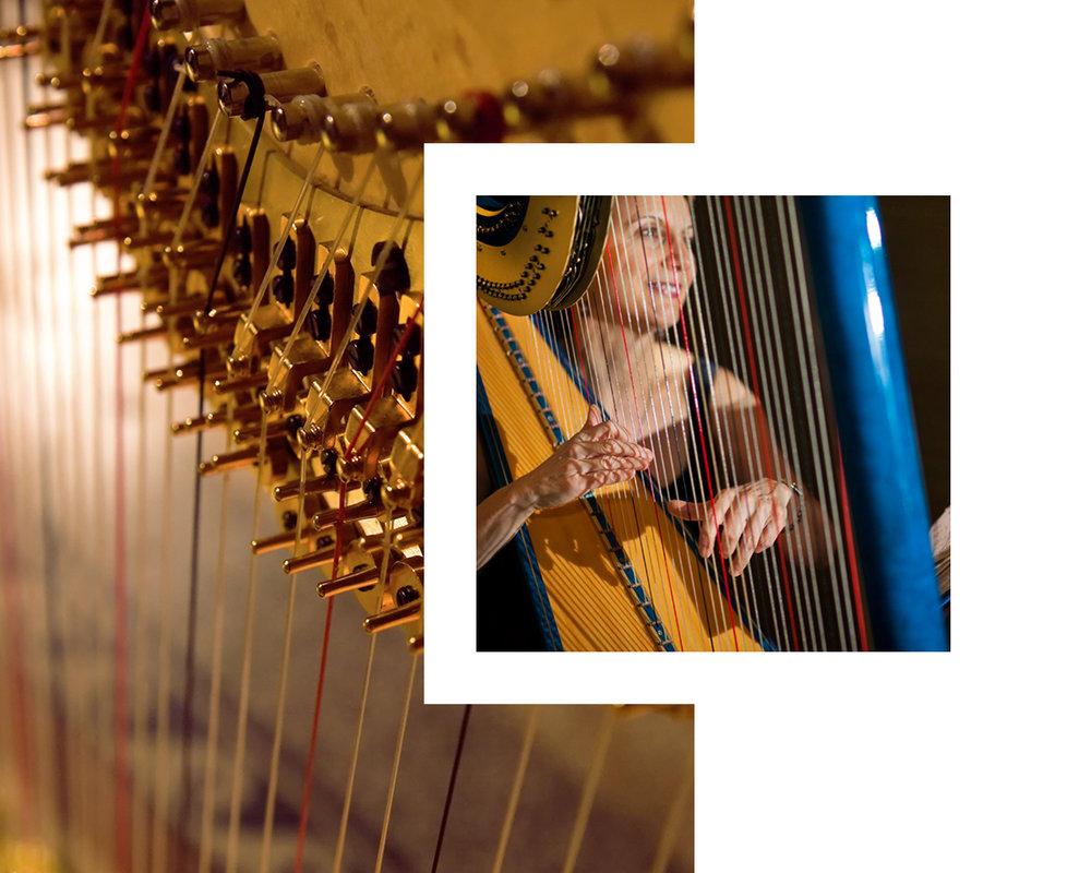 the-gilded-harps-learn-header-c.jpg