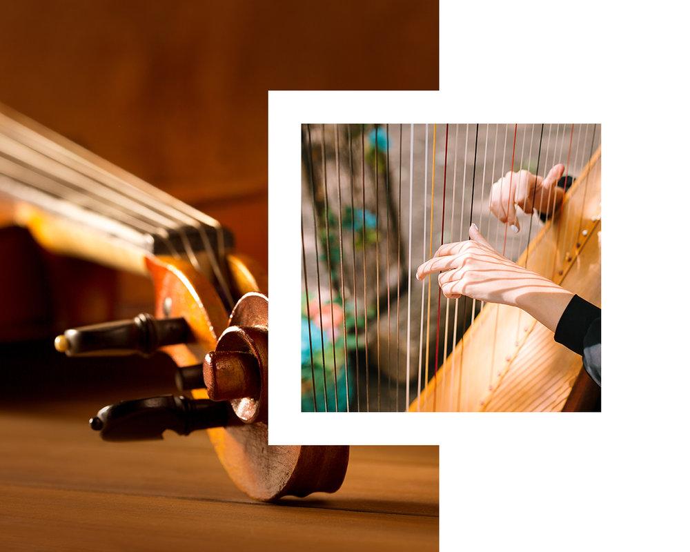 the-gilded-harps-network-image.jpg