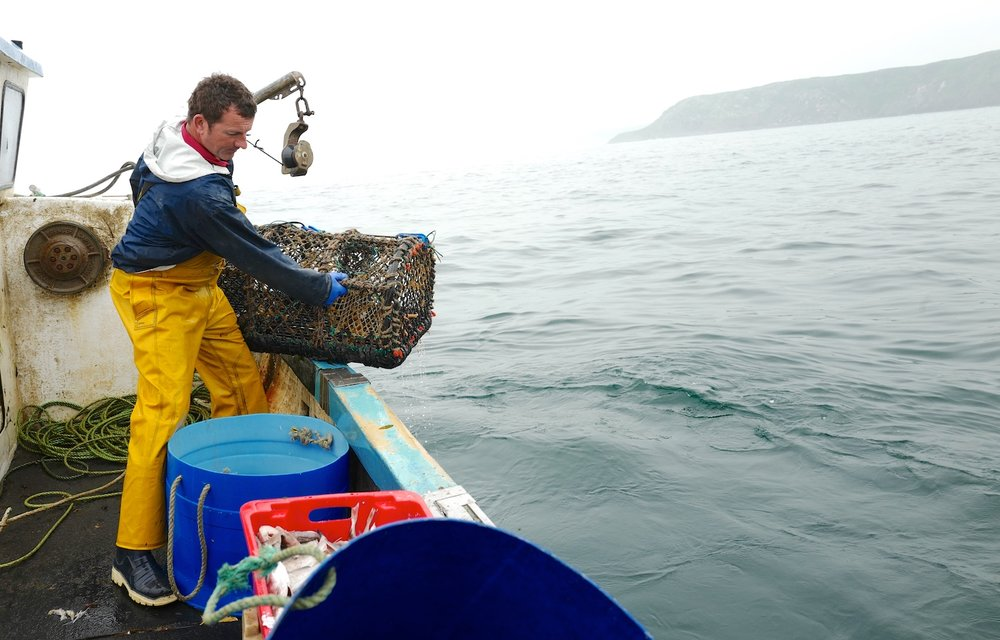 John - Cornish crab fisherman.JPG