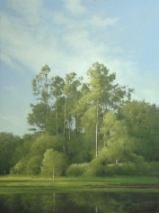 Reflecting Pines <br> SOLD