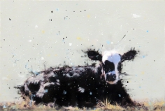Black Calf with White Face <br> 8h x 12w in