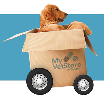 Shop our new web store — Blue Sky Veterinary Clinic