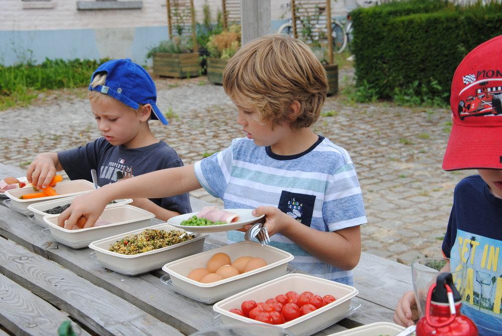 photo-ferme-ecologie-belgique-bio-permaculture-potager-maraichage.jpg