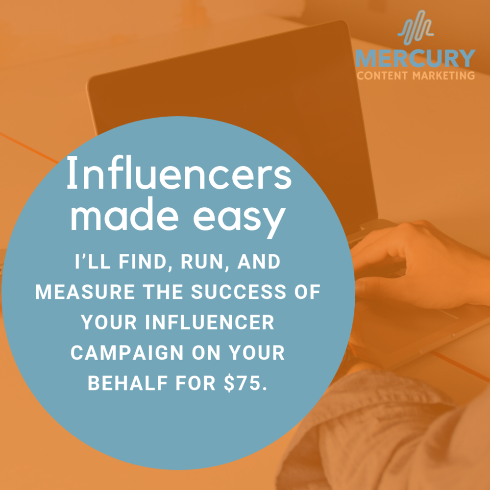 influencer campaigns.png