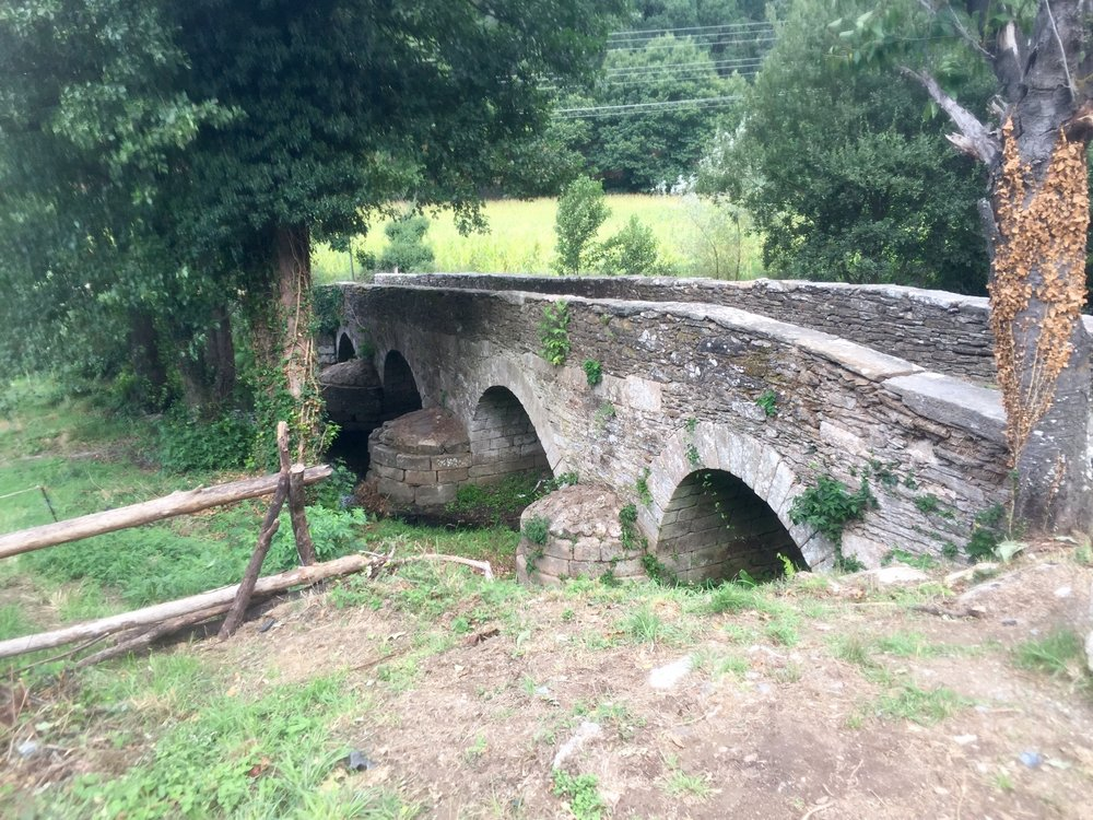 Ashram-The-Camino-de-Santiago-Bridge.jpg