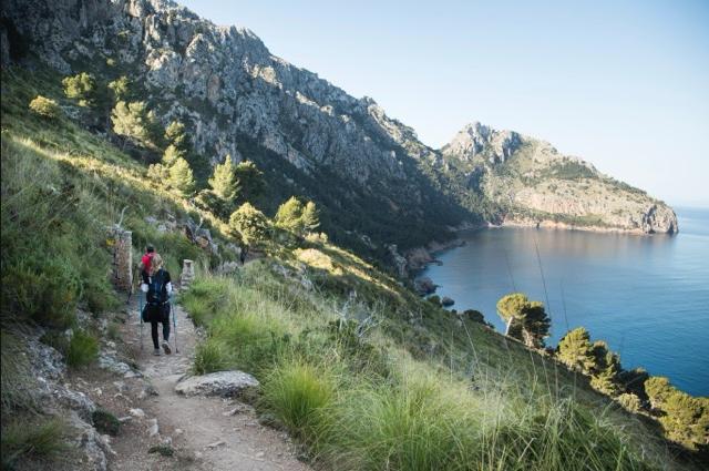 Ashram-Mallorca-homepage.png