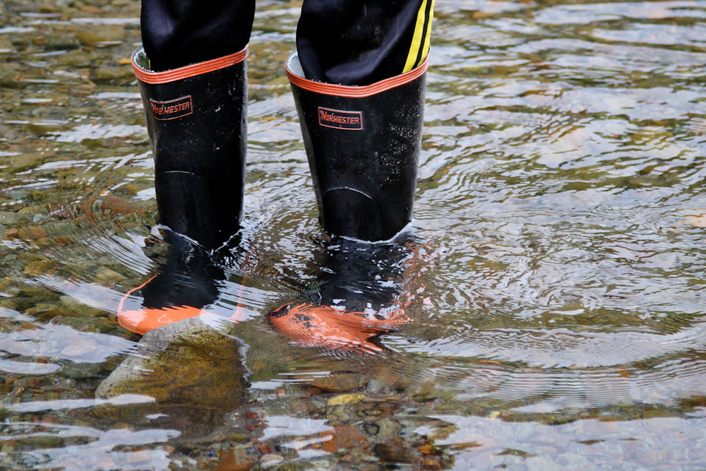 boots in water.JPG