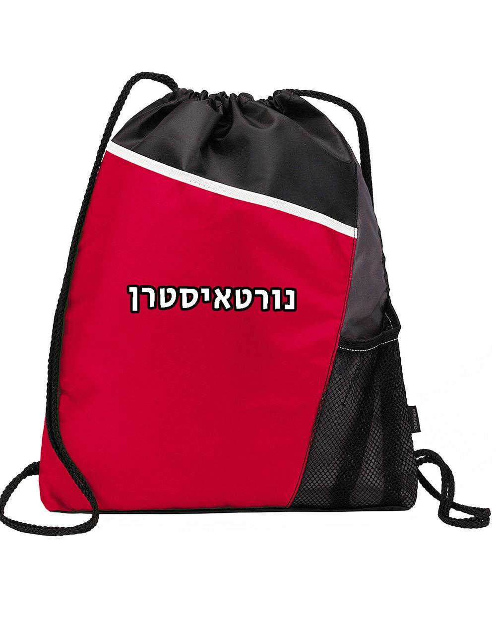NOrtheastern Backpack.jpg