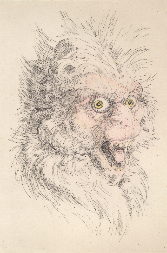 "Laurie Hogin,  Chicago Portraits: Head of an Official (Monkey) , Etching, aquatint, and chine colle, paper size 11 x 15"", image size 6 x 9"", 2007"