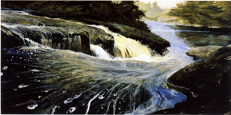 Wyeth.TheCarry