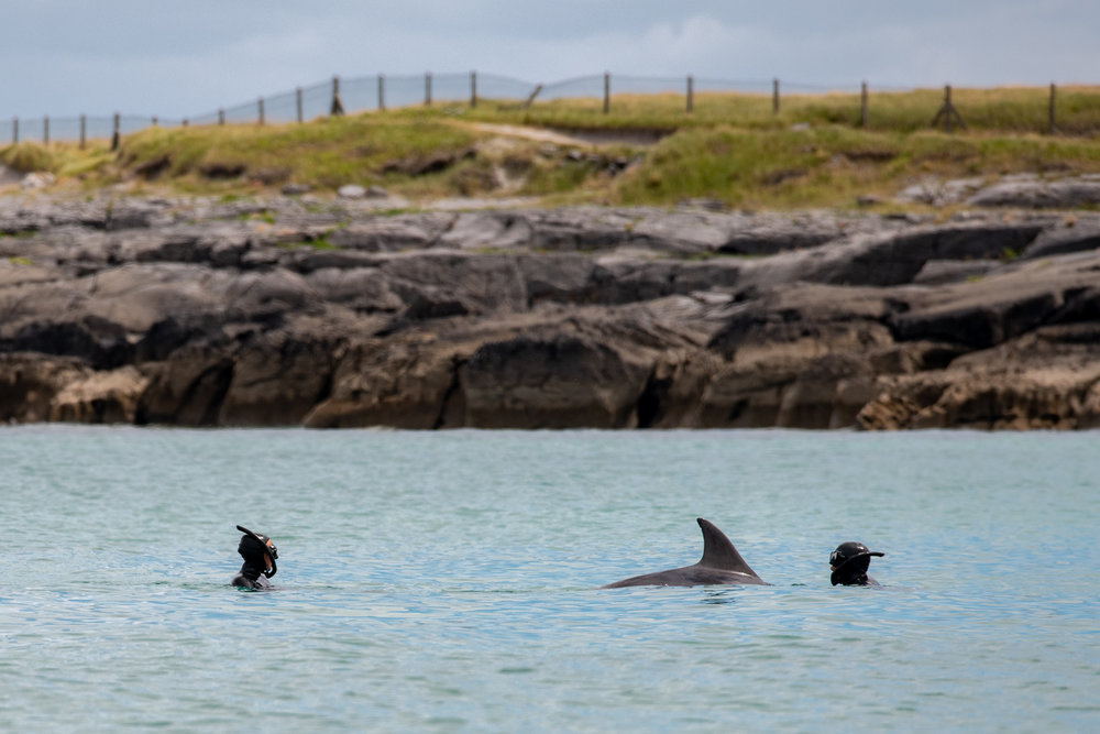 Kate, George and Malinká swim together at the Aran Islands