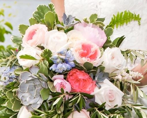 succulents, delphinium, garden roses