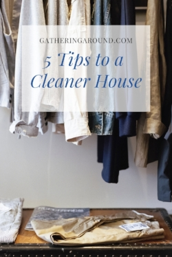5 Tips to a Cleaner House