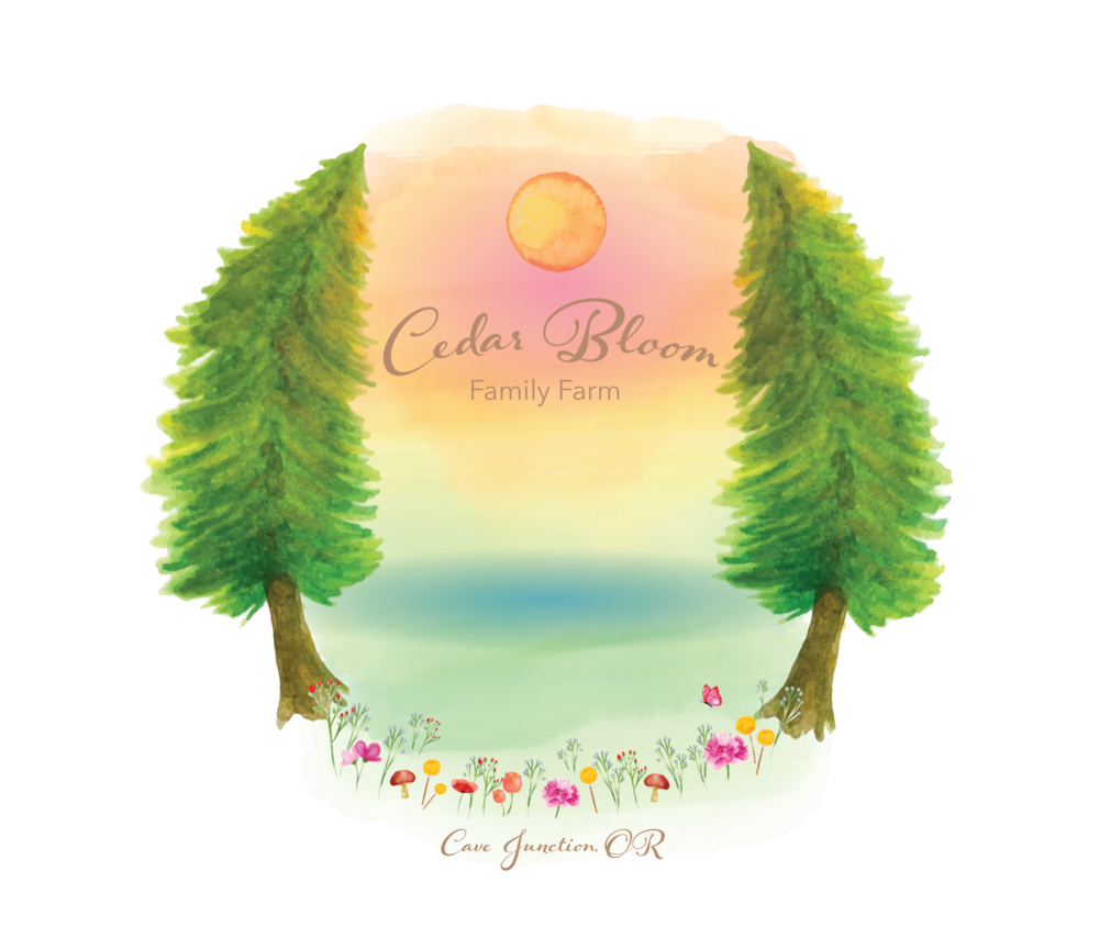 Cedar Bloom Logo-Transparent Background-2.png
