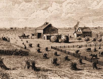 Pioneer Farm 1.jpg