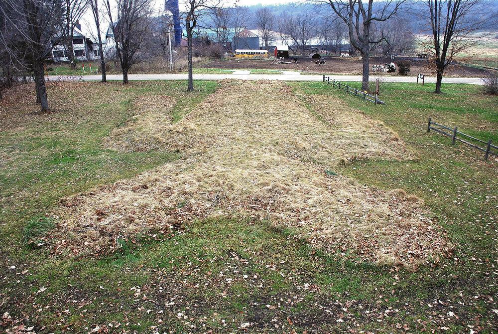 Man Mound November 2010