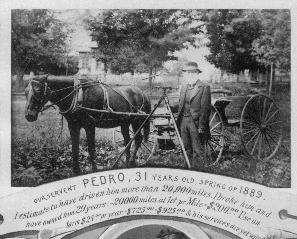 Canfield & Pedro.jpg